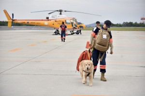 SAR dog and heli