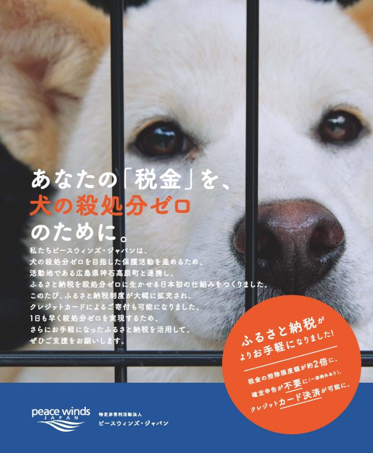犬の殺処分ゼロのために