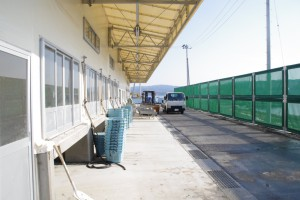 再建されたカキ処理場と防風フェンス