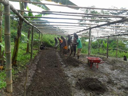 エルメラ県レテフォホ郡ハトゥガウ村での苗床作りの様子