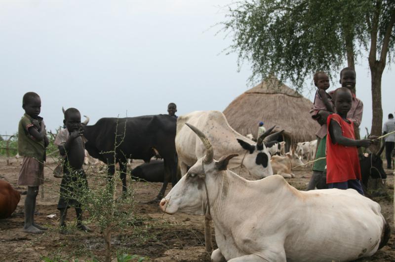 紛争以前のボー周辺の村の様子2