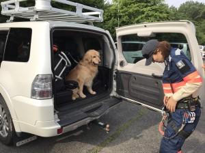 陸路で被災地に向かう準備をするPWJレスキュー隊員と災害救助犬のハルク
